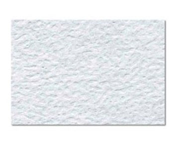 Imagen de Cascaron Jiss octavo 28x35 cm blanco